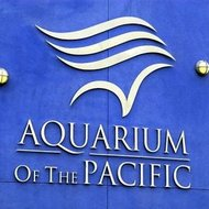 images/assets/images/news/small_Aquarium_of_the_Pacific.jpeg